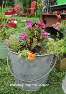 Vintage Galvanized Bucket with flowers