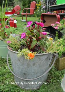 Vintage Galvanized Bucket with flowers